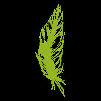 Eine grüne Feder