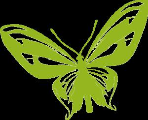 Ein grüner Schmetterling